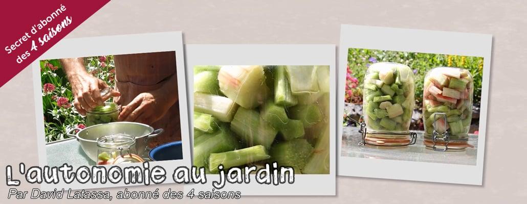 Conserver la rhubarbe sans cuisson ni congélation (9/12) 1