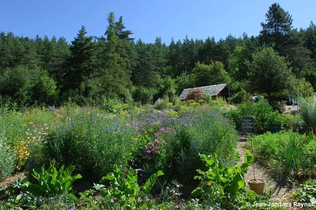 Vue d'ensemble sur les jardins du Centre Terre vivante (association des légumes et plantes)