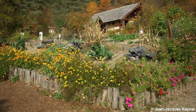 Vue générale sur des fleurs et une maison plus haut