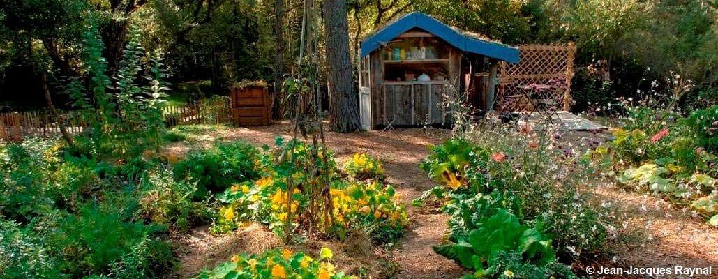 Une vue globale sur le potager avec une petite cabane tout au fond