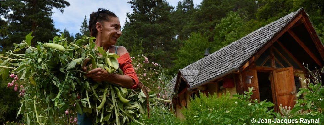 La jardinière tient dans ses bras sa récolte de fèves, regardant au loin son potager