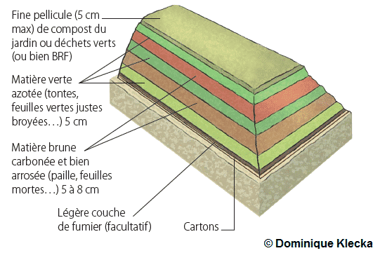 Schéma d'une lasagne au potager par Dominique Klecka