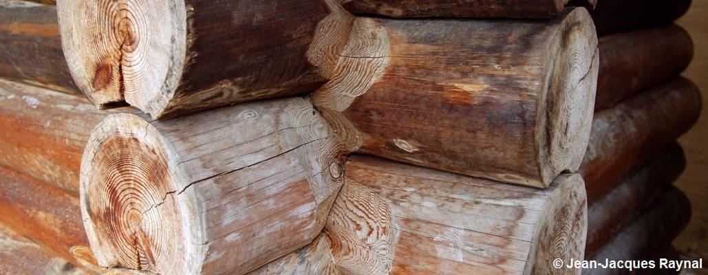 Rondins de bois d'une maison (gros plan)