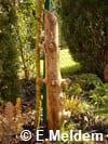 Nid à osmies en bois inoccupé