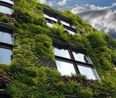 Prise de vue en contre-plongée d'un bâtiment complètement végétalisé, tout au vert