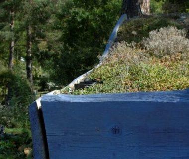 Un toit bleu végétalisé