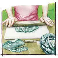 Illustration d'une personne qui écrase des feuilles de chou au rouleau