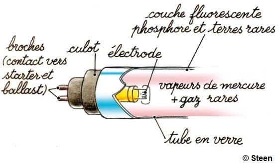 Illustration du fonctionnement des tubes et néons à ampoules fluocompactes
