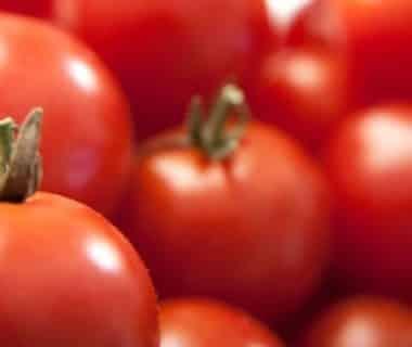 Quelques tomates bien rouges
