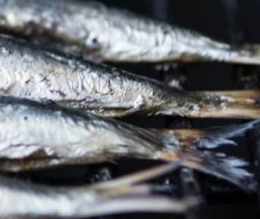 Queues de poissons sur une grille
