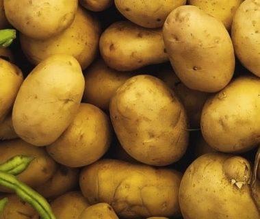 Pommes de terre au milieu de légumes verts