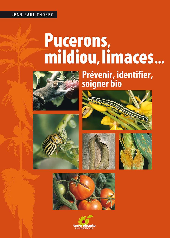 Pucerons, mildiou, limaces…