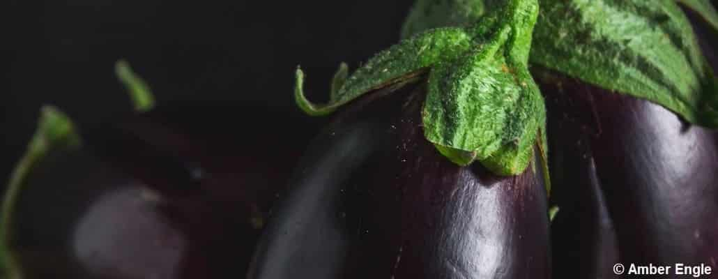 Gros plan sur des aubergines