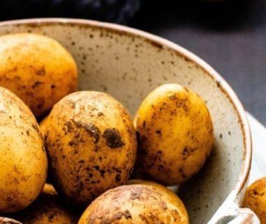 Pommes de terre dans un saladier