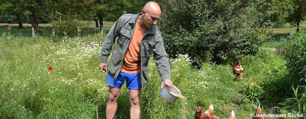 David nourrit ses poules