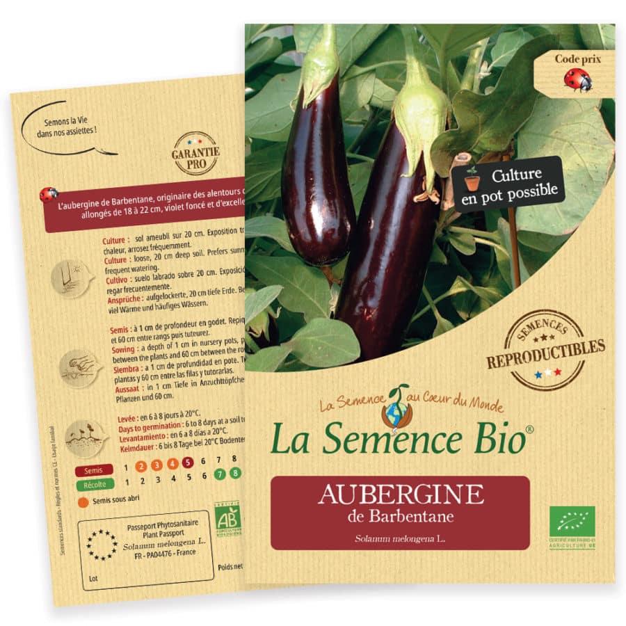 Graines Aubergine violette de Barbentane bio 1