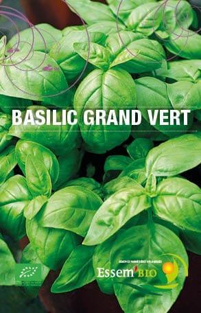 Graines Basilic grand vert bio – Essembio