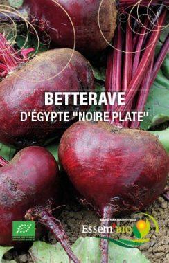 "Graines Betterave d'Egypte ""noire plate"" bio - Essembio"