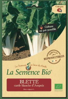 Graines Blette carde blanche d'Ampuis bio - La semence bio