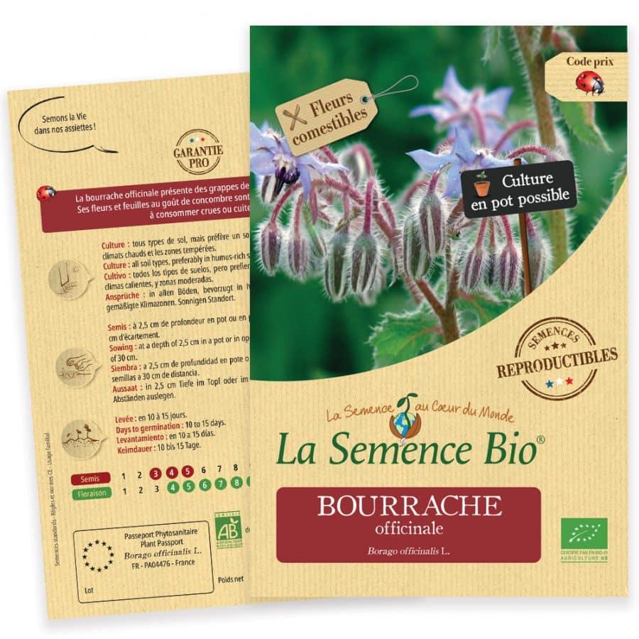 Graines Bourrache officinale bio - La semence bio