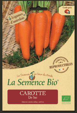 Graines Carotte De luc bio - La semence bio 1