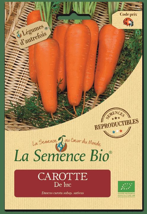 Graines Carotte De luc bio – La semence bio 1