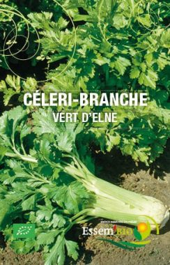 Graines Céleri branche vert d'Elne bio - Essembio