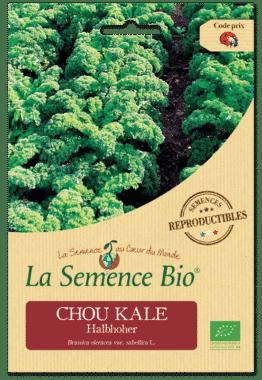 Graines Chou Kale Halbhoher Bio - La semence bio