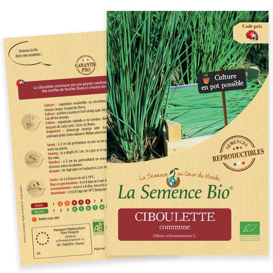 Graines Ciboulette commune bio - La semence bio 1
