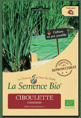 Graines Ciboulette commune bio - La semence bio