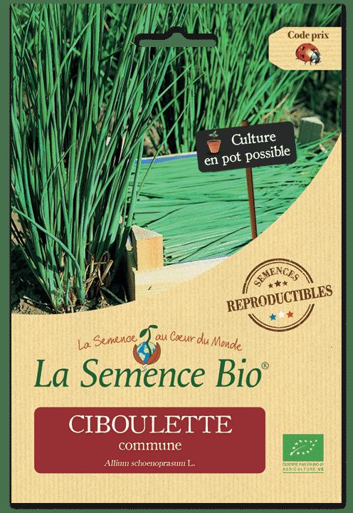 Graines Ciboulette commune bio – La semence bio