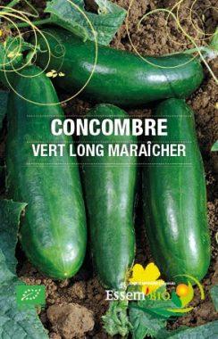 Graines Concombre vert long maraicher bio - Essembio