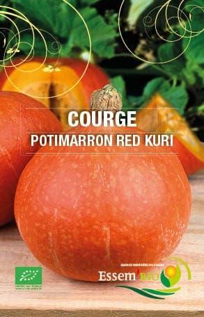 Graines Courge Potimarron Red Kury bio – Essembio