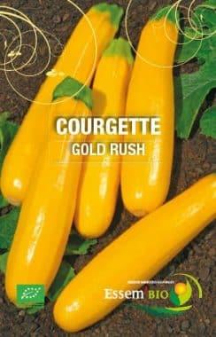 Graines Courgette Gold Rush bio - Essembio