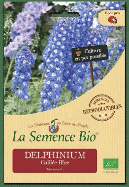 Graines DELPHINIUM Galilée Blue Bio - La semence bio