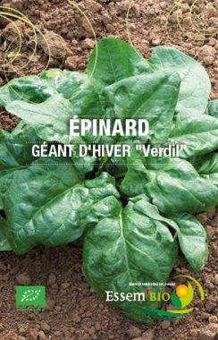 Graines Epinard geant dhiver verdil bio - Essembio