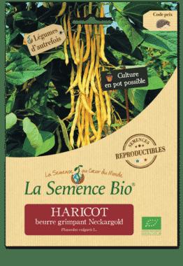 Graines Haricot beurre grimpant Neckargold Bio - La semence bio