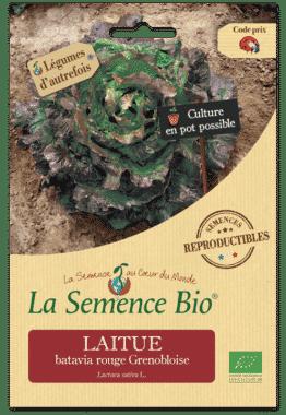 Graines Laitue batavia rouge Grenobloise Bio - La semence bio