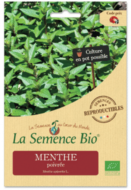 Graines Menthe poivrée bio - La semence bio