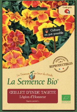 Graines Œillet d'Inde bio - La semence bio
