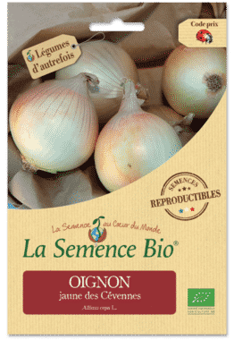 Graines Oignon jaune des Cévennes Bio - La semence bio 1