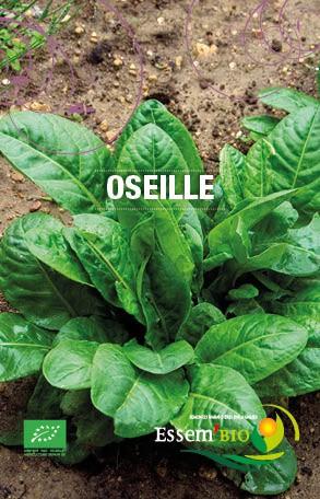 Graines Oseille bio – Essembio