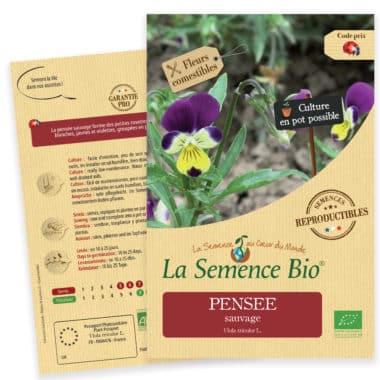 Graines Pensée sauvage bio - La semence bio 1