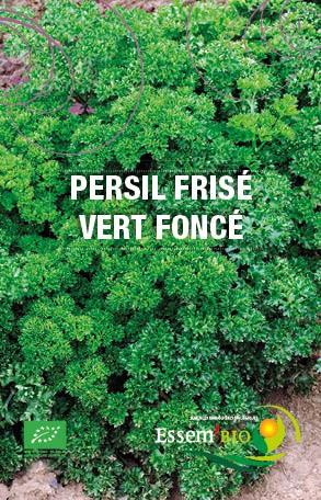 Graines Persil frisé vert foncé bio – Essembio