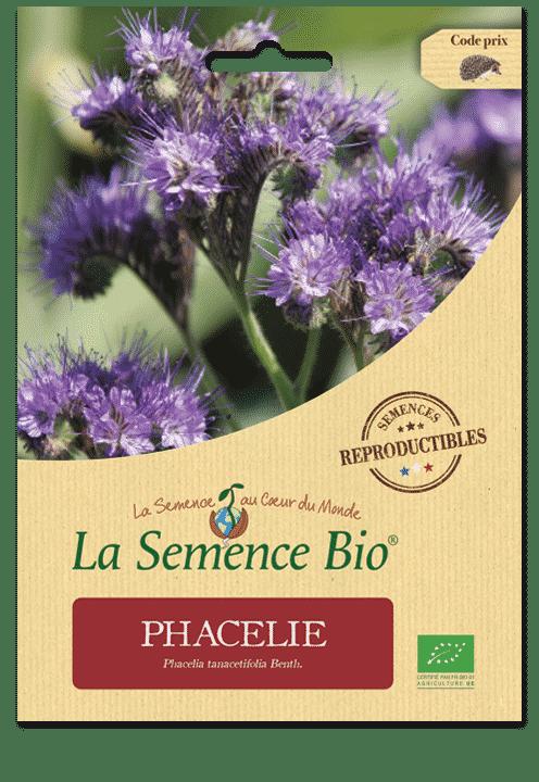 Graines Phacélie bio – La semence bio