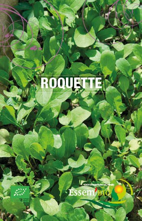 Graines Roquette cultivée bio – Essembio