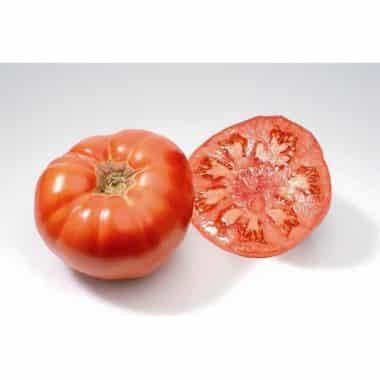 Graines Tomate Marmande bio - Les Semailles