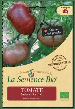 Graines Tomate Noire de Crimée Bio - La semence bio 1