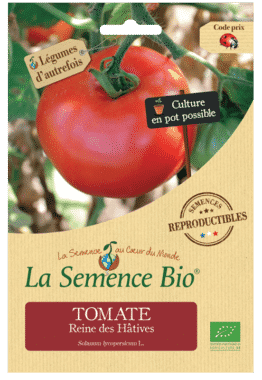 Graines Tomate Reine des Hâtives Bio - La semence bio