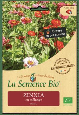 Graines Zinnia bio - La semence bio